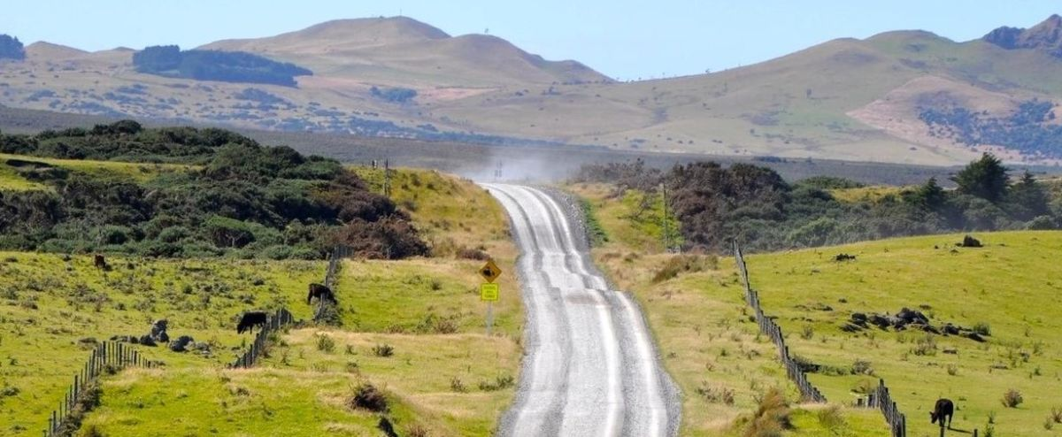 Travel to the Chatham Islands